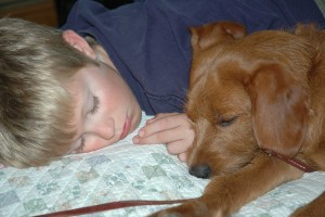 Kids and pets share a tight bond.