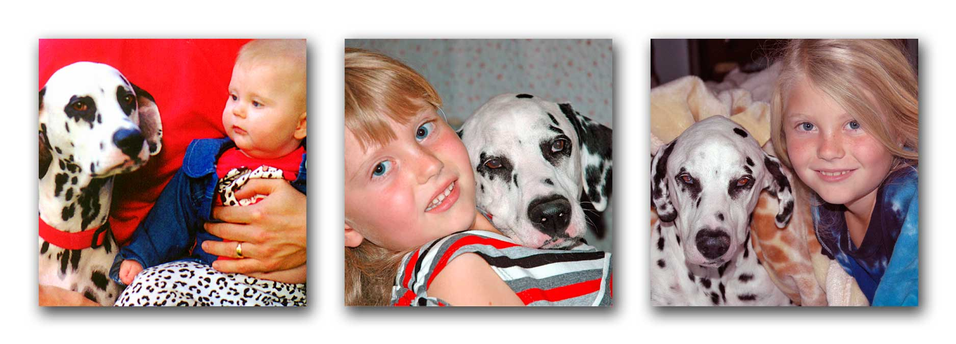 Molly growing up with our daughter. Molly is ages 4, 10, and 13.